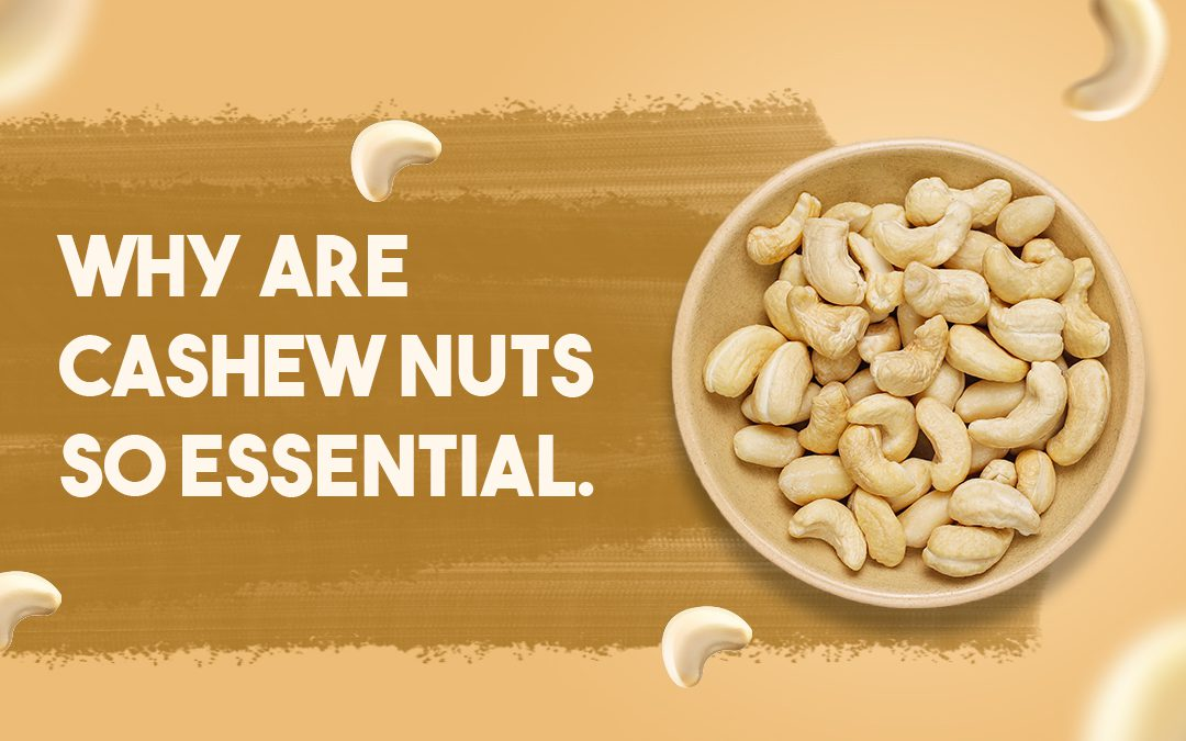Why are cashew nuts so essential?
