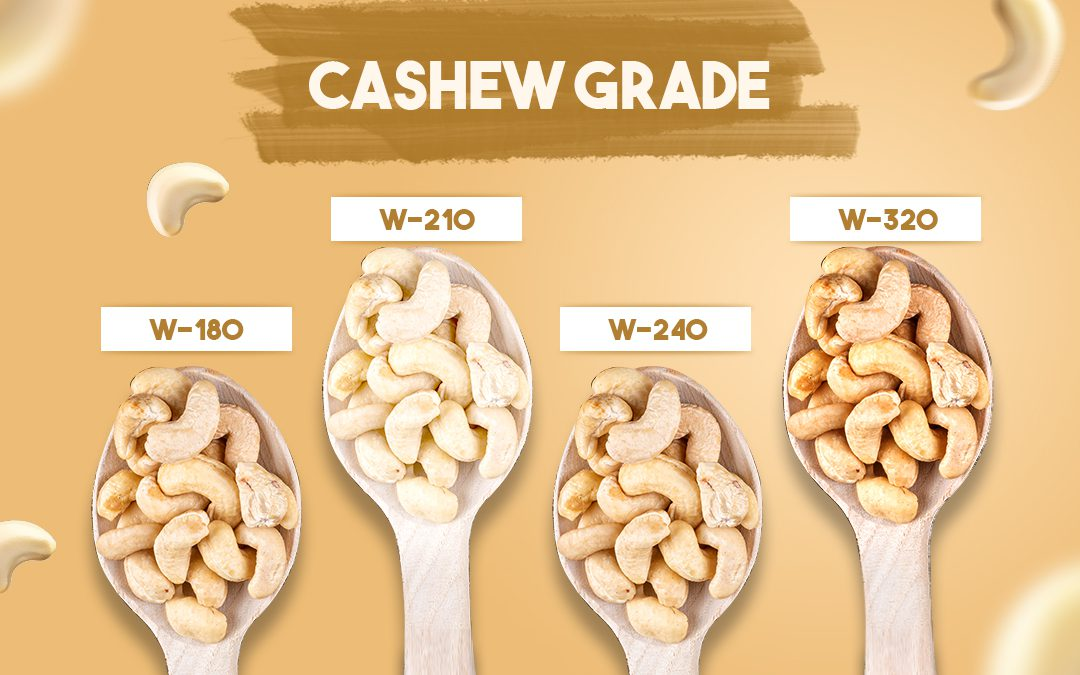 Know Your Type: All You Need to Know About Cashew Grades